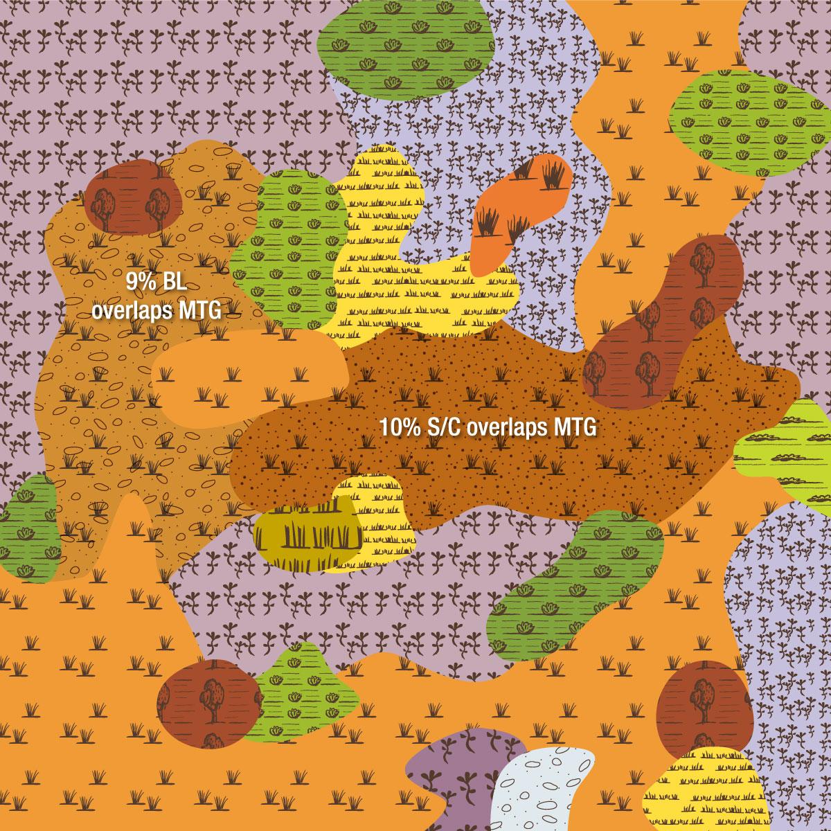 EVC 803 Plains Woodland image
