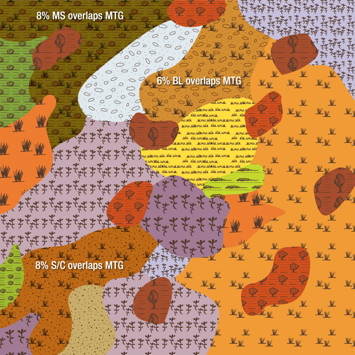 EVC 55_61 Plains Grassy Woodland image